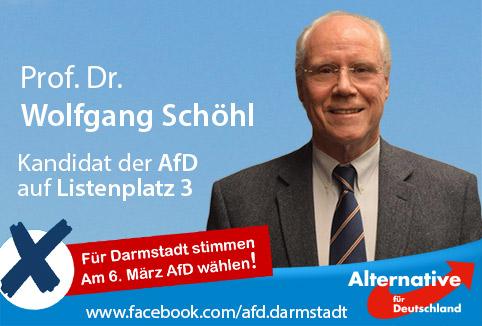 Wolfgang Schöhl - AfD Kandidat